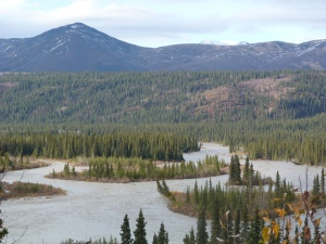 Little Susitna River near the road closure