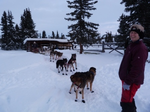 Jayne visiting with a few of her dogs.