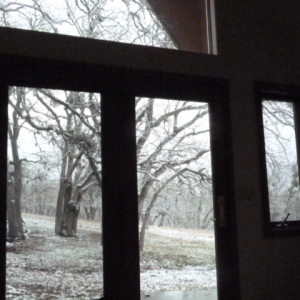 We can watch the birds and animals from our bedroom at Chimney Rock.