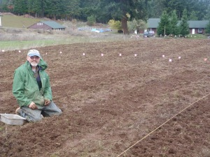 Friend Steve thought he'd retired from farming (in Fairbanks!), but made a return visit to Blue Moon Stead this year to plant garlic.